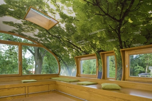 amazing-tree-house-office-2